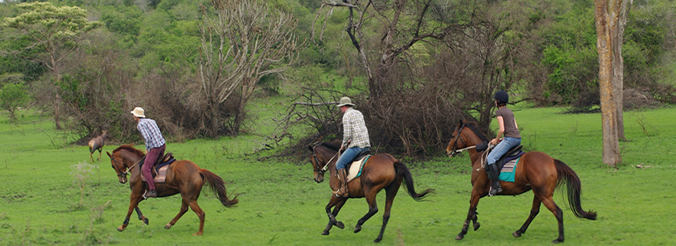 lake-mburo-horse-ride